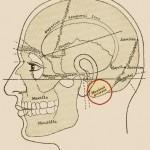 Bipolar Binaural Galvanic Vestibular Stimulation